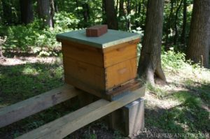 Bee hive at St Anne's Episcopal