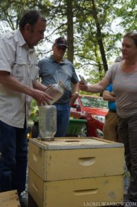Feeding bee hive sugar water