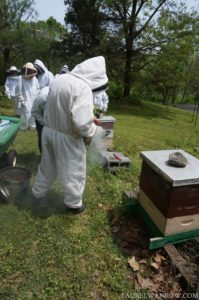 beekeeper with a smoker